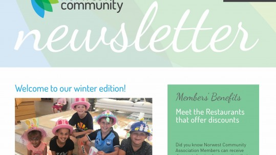 NC1013 Newsletter Winter 2018 web1